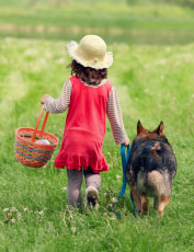 child and dog walking in a field