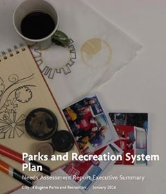 Parks and Recreation System Plan Executive Summary