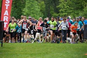 Starting line at Greenhill Bark in the Park event at Alton Baker Park