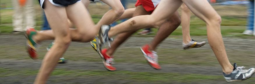 Runners in a cross country race