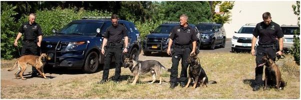 Eugene Police K9 Team Photo - Four Canines and Four Officers