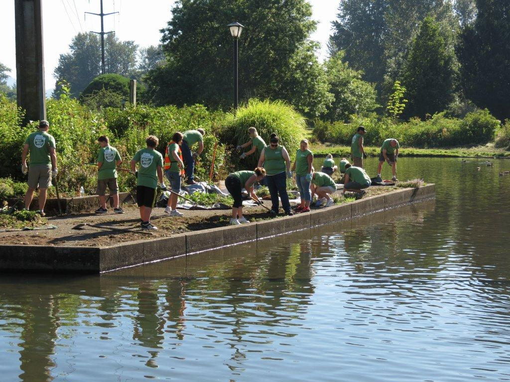 volunteers working at the Alton Baker Park duck pond