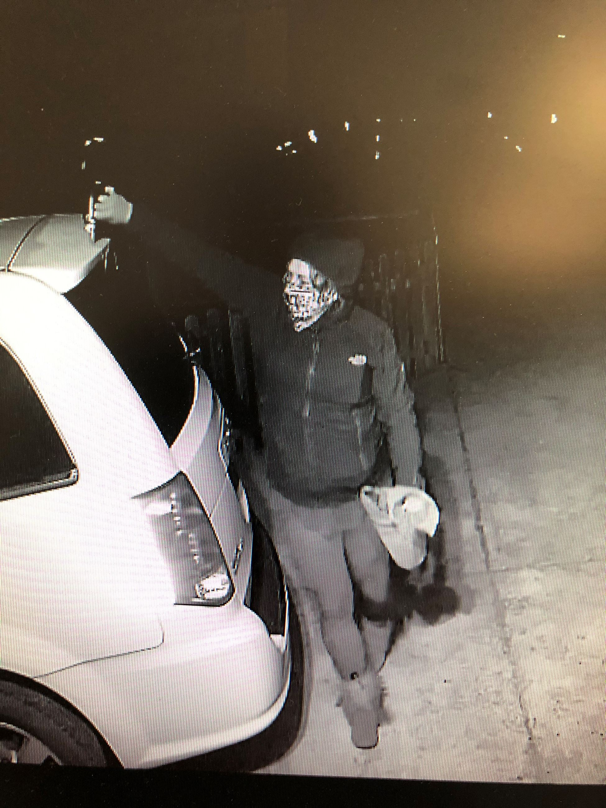 Surveillance photo of the vandalism suspect